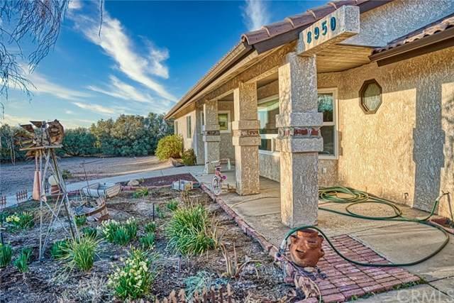 8950 Elm Street, Phelan, CA 92371 (#303027327) :: SD Luxe Group