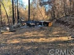 5 Pam R, Berry Creek, CA 95916 (#303028337) :: The Mac Group