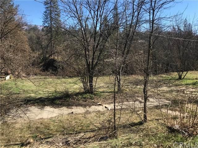 33001 Willow Creek - Photo 1