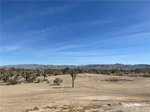 58323 Sunflower Drive, Yucca Valley, CA 92284 (#303030493) :: Compass
