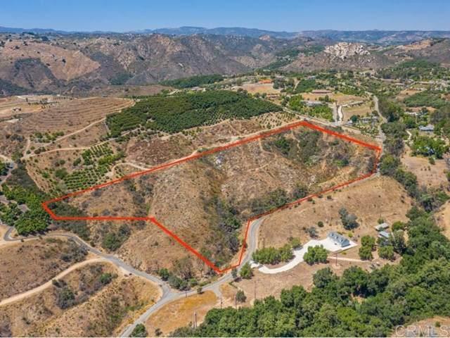 Rock Mountain Dr., Fallbrook, CA 92028 (#NDP2102253) :: Wannebo Real Estate Group