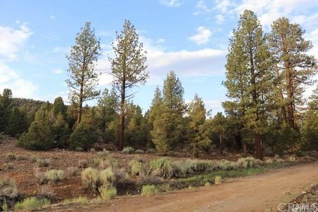 2809 Erwin Ranch - Photo 1
