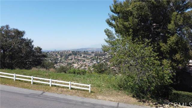 23209 Ridge Line, Diamond Bar, CA 91765 (#PW21068247) :: Wannebo Real Estate Group