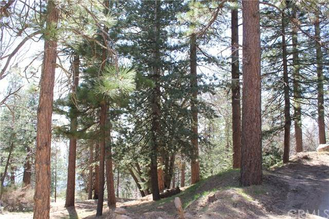 0 Preston, Running Springs, CA 92382 (#EV21075912) :: PURE Real Estate Group