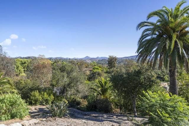 16256 Via Del Alba, Rancho Santa Fe, CA 92067 (#NDP2103880) :: Wannebo Real Estate Group