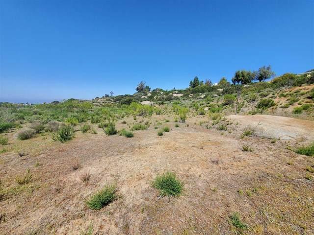 2 Otto Ave, Alpine, CA 91901 (#NDP2103896) :: PURE Real Estate Group
