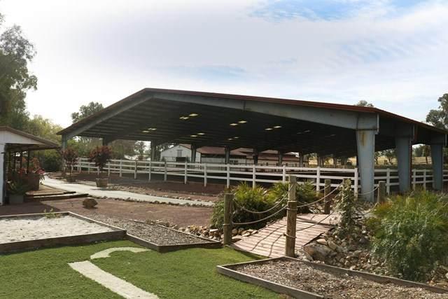 31601 Briggs Road, Menifee, CA 92584 (#NDP2103943) :: The Stein Group