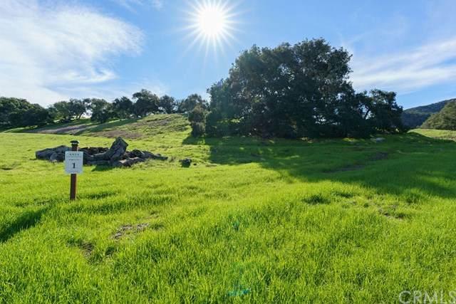 550 Spanish Springs, San Luis Obispo, CA 93401 (#PI21079507) :: SD Luxe Group