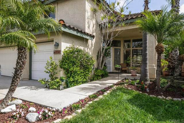 1349 Via Isidro, Oceanside, CA 92056 (#NDP2104070) :: Team Forss Realty Group