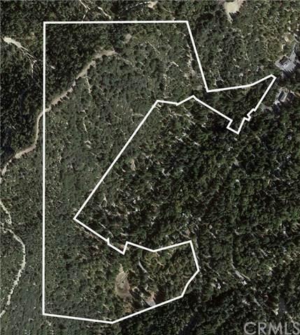 0 Mountain Home Creek, Angelus Oaks, CA 92305 (#EV21085035) :: COMPASS