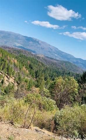 21025 Elk Mountain, Upper Lake, CA 95469 (#LC21082408) :: COMPASS