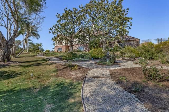 2 Golden Meadow Lane, Fallbrook, CA 92028 (#NDP2104467) :: Wannebo Real Estate Group
