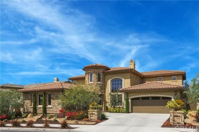 29311 Paseo Palmar, San Juan Capistrano, CA 92675 (#OC21089271) :: San Diego Area Homes for Sale