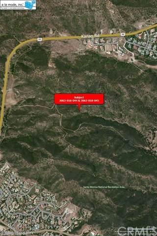 0 Kanan, Agoura Hills, CA 91301 (#EV21082343) :: Compass