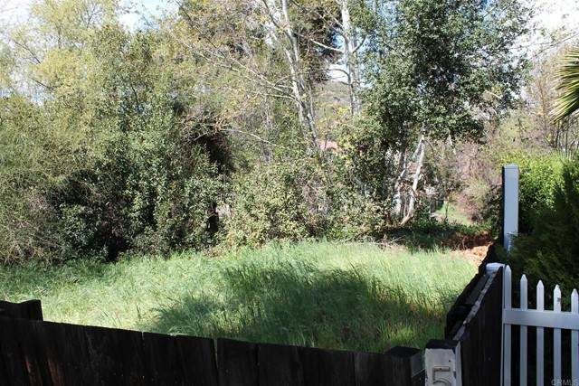 561 Silverbrook Dr, El Cajon, CA 92019 (#PTP2103072) :: PURE Real Estate Group