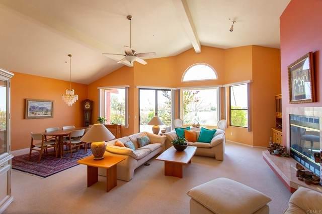 557 Quail Run Drive, Borrego Springs, CA 92004 (#NDP2105105) :: SunLux Real Estate