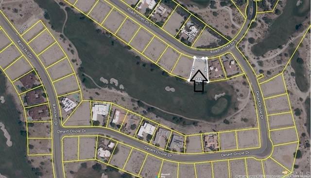 Roadrunner, Borrego Springs, CA 92004 (#NDP2105285) :: The Legacy Real Estate Team