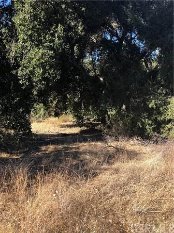 4 Red Mountain, Hemet, CA 92544 (#SW21104471) :: SunLux Real Estate