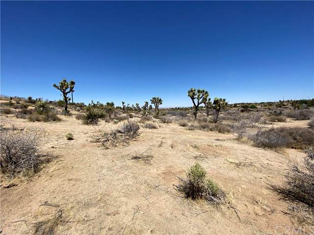 39 Lot Brisbane, Yucca Valley, CA 92284 (#IG21103880) :: The Mac Group