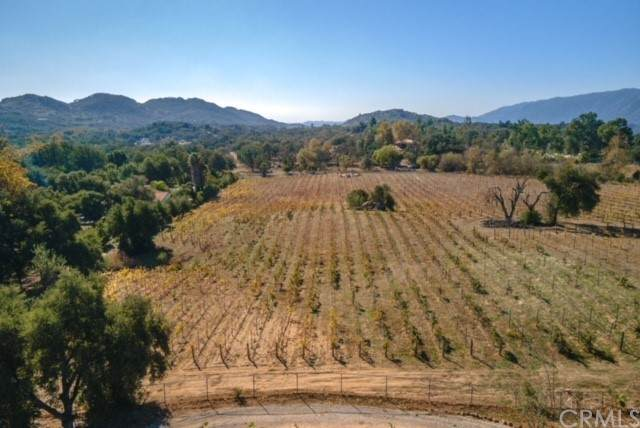 19910 Carancho, Temecula, CA 92590 (#SW21104489) :: SunLux Real Estate