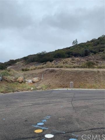 0 Longmont, Vista, CA 92084 (#PW21106263) :: PURE Real Estate Group