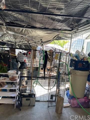 10726 Juniper Street, Los Angeles, CA 90059 (#DW21106439) :: SunLux Real Estate