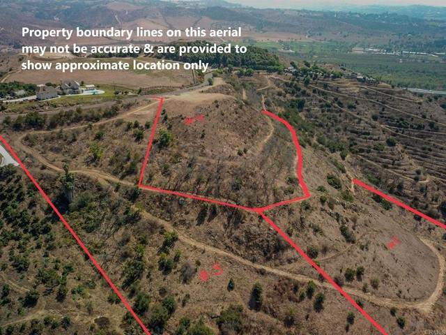 Monserate Hill, Fallbrook, CA 92028 (#NDP2106386) :: The Stein Group