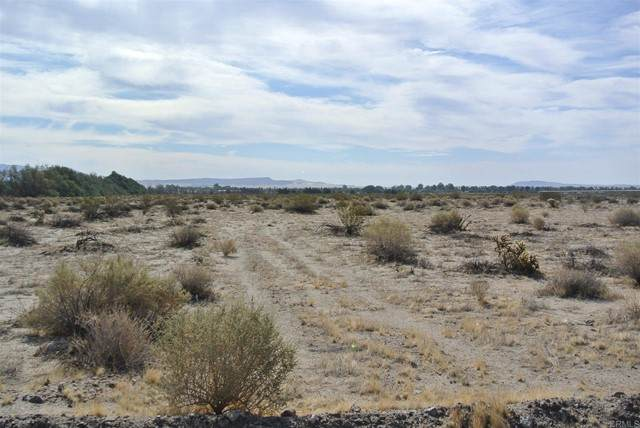 2118 Lazy S, Borrego Springs, CA 92004 (#NDP2106493) :: The Marelly Group | Sentry Residential