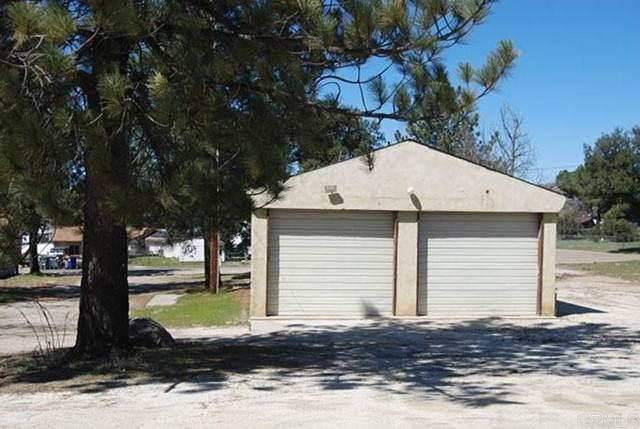 29870 Oak Drive, Campo, CA 91906 (#PTP2103965) :: Dannecker & Associates