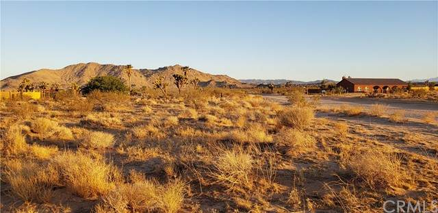 0 Wesley, Joshua Tree, CA 92252 (#JT21127806) :: SD Luxe Group