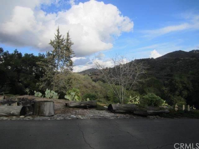 21101 Hillside, Topanga, CA 90290 (#EV21105739) :: Compass
