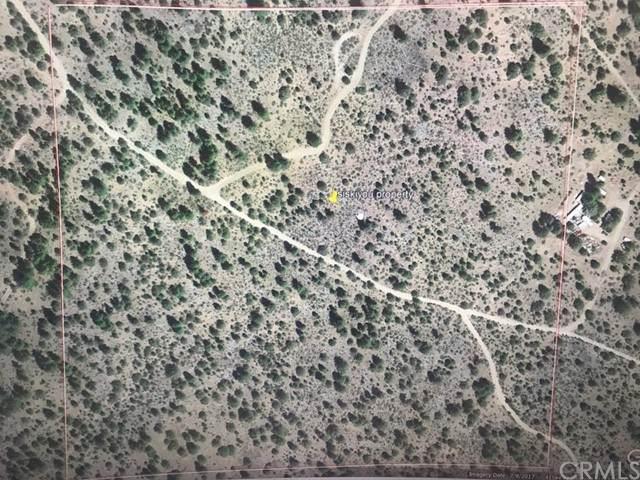 0 Red Rock Road, Macdoel, CA 96058 (#SN21132305) :: Solis Team Real Estate