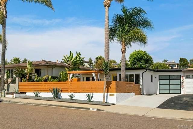 251 Rosebay Drive, Encinitas, CA 92024 (#NDP2107056) :: Windermere Homes & Estates
