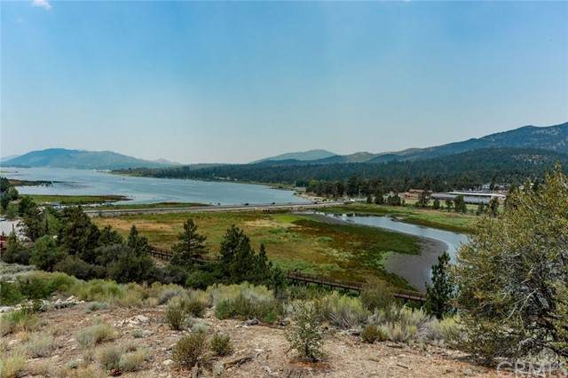 160 Eagle Lake, Big Bear, CA 92315 (#PS21133150) :: The Todd Team Realtors