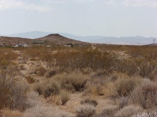 61011 Sonora, Joshua Tree, CA 92252 (#JT21133653) :: Solis Team Real Estate