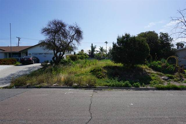 919 Concepcion, Spring Valley, CA 91977 (#PTP2104374) :: PURE Real Estate Group