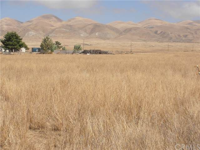 22 Artesia Trail, Santa Margarita, CA 93453 (#SC21136650) :: Solis Team Real Estate