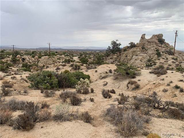 5725 Cholla, Yucca Valley, CA 92284 (#JT21137004) :: SD Luxe Group