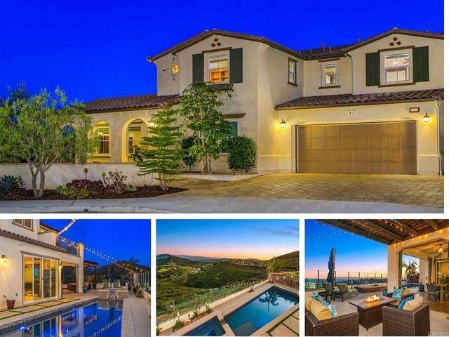 1189 Lauren Pl, San Marcos, CA 92078 (#NDP2108327) :: Dannecker & Associates