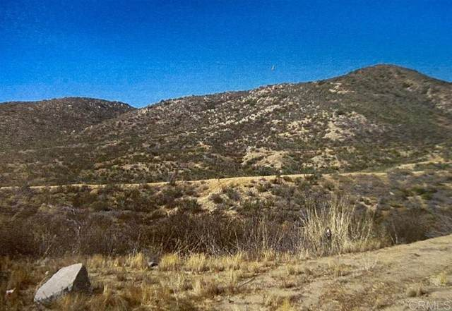 Tecate Rd, Tecate, CA 91980 (#PTP2105145) :: Team Forss Realty Group