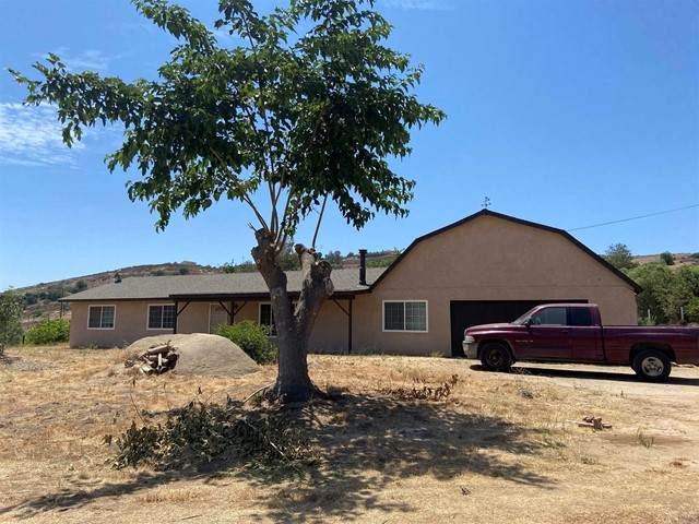 2208 Black Canyon Road, Ramona, CA 92065 (#NDP2108565) :: SD Luxe Group