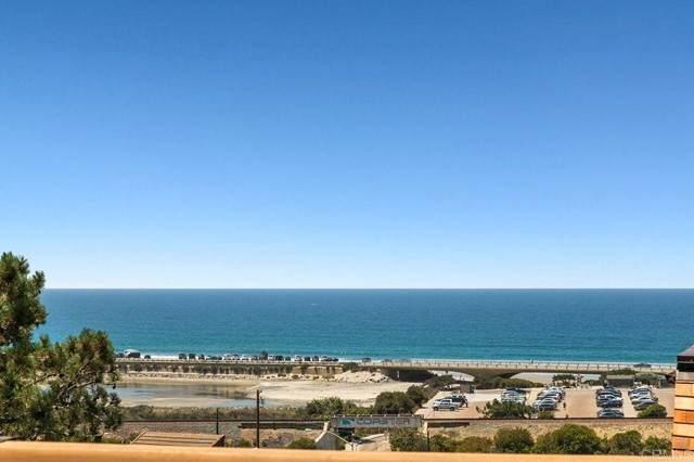 13084 Caminito Del Rocio, Del Mar, CA 92014 (#NDP2108588) :: The Miller Group