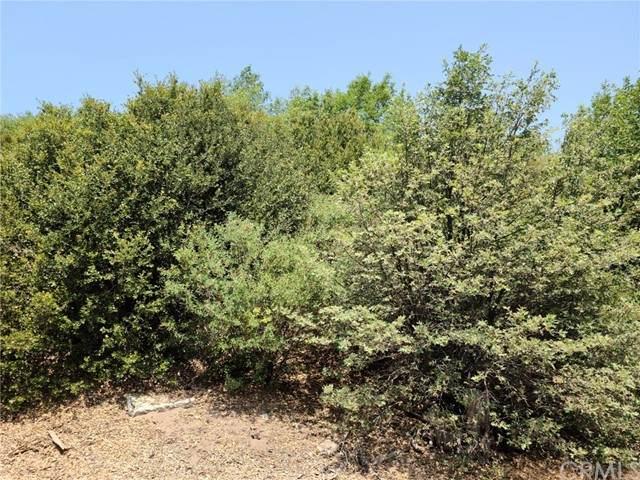 0 Pine, Cedar Glen, CA 92352 (#EV21162847) :: SD Luxe Group