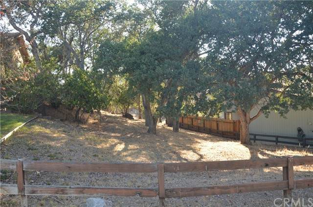 5003 Pretty Doe, Paso Robles, CA 93446 (#NS21162170) :: SD Luxe Group
