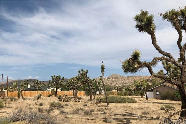 6560 Prescott Ave: Apn0601541040000, Yucca Valley, CA 92284 (#JT21162944) :: SD Luxe Group