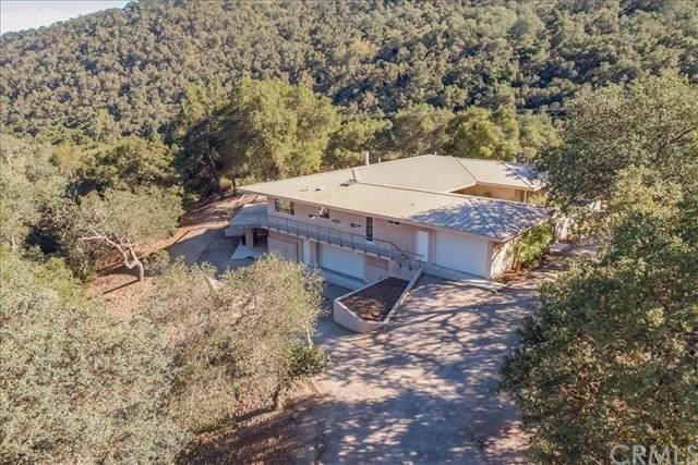 2323 Vine Hill Lane, Paso Robles, CA 93446 (#NS21150561) :: Windermere Homes & Estates