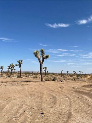 4591132 Yucca, Adelanto, CA 92301 (#CV21167789) :: The Stein Group