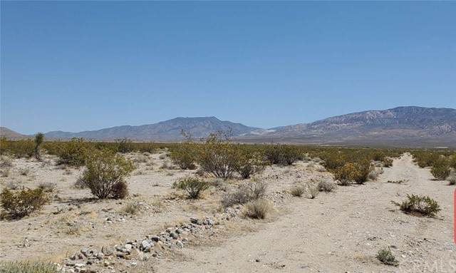 39036 Foothill, Lucerne Valley, CA 92356 (#DW21168009) :: The Legacy Real Estate Team
