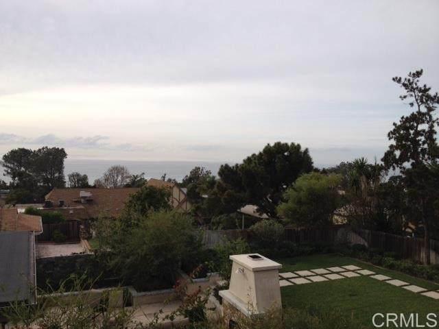 346 10th Street, Del Mar, CA 92014 (#NDP2108952) :: Solis Team Real Estate