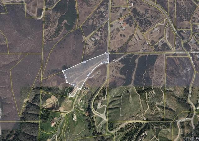 Paso Oro Verde, Fallbrook, CA 92028 (#NDP2109007) :: Zember Realty Group